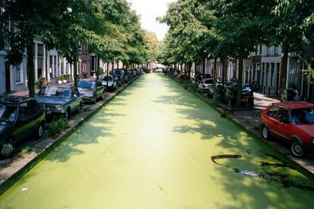 greenstreets.jpg