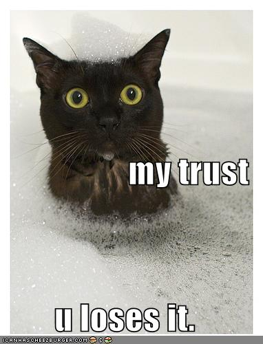 funny-pictures-cat-bubble-bath-trust