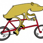 Bear-on-Bicycle.002-630x453
