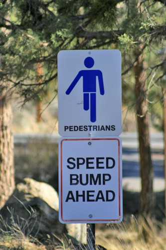 Pedestrian_Speed_bumps